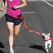 Cães Mãos Leash gratuito Retratável / Corrida / Sensor Sólido Vermelho / Branco / Verde / Rosa / Púrpura Náilon