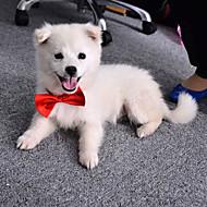 Kissat Koirat Solmio/Rusetti Koiran vaatteet Kesä 봄/Syksy Rusetti Söpö Häät Oranssi Purppura Punainen Sininen Pinkki