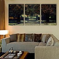 E-HOME® Stretched LED Canvas Print Art Street LED Flashing Optical Fiber Print Set of 3
