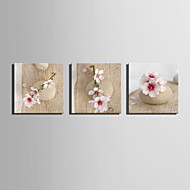 E-HOME® Stretched Canvas Art Stone on The Peach Decoration Painting  Set of 3