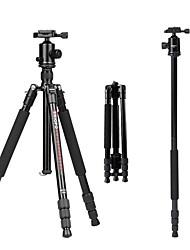 Aluminium-magnesium legering 50 4.0 Secties Nikon Canon Statief