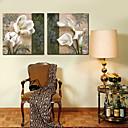 cheap Prints-Stretched Canvas Print Botanical Two Panels Horizontal Print Wall Decor Home Decoration