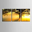 preiswerte Kunstdrucke-Aufgespannte Leinwandrucke Leinwand-Set Blumenmuster/Botanisch Modern, Drei Paneele Segeltuch Horizontal Druck Wand Dekoration Haus