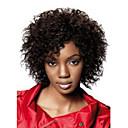 Недорогие Парики для кукол-Парики из искусственных волос Афро / Kinky Curly Стиль Без шапочки-основы Парик Черный Черный Искусственные волосы Жен. Черный Парик Парик для Хэллоуина