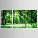 baratos Impressões-Paisagem Floral/Botânico Clássico Pastoril, 3 Painéis Tela de pintura Vertical Estampado Decoração de Parede Decoração para casa