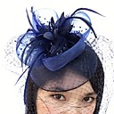 cheap Necklaces-Feather / Net Fascinators / Birdcage Veils with 1 Wedding / Special Occasion Headpiece