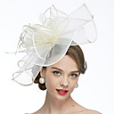 cheap Party Headpieces-Net Fascinators / Hats / Birdcage Veils with 1 Wedding / Special Occasion Headpiece