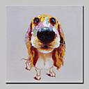 olcso Állatos festmények-Hang festett olajfestmény Kézzel festett - Állatok Absztrakt Modern Anélkül, belső keret