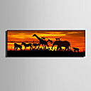 cheap Rolled Canvas Paintings-Animals Illustration Wall Art, Plastic Material With Frame For Home Decoration Frame Art Living Room