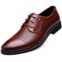 זול סניקרס לגברים-בגדי ריקוד גברים לבש נעליים עור אביב / סתיו נוחות נעלי אוקספורד שחור / חום