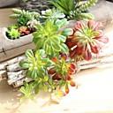 ieftine Flori Artificiale-Flori artificiale 1 ramură Comun / Pastoral Stil Plante suculente Față de masă flori