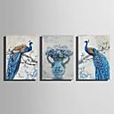 זול אומנות ממוסגרת-דפוס הדפסי בד מתוחים - חיות פרחוני / בוטני מודרני