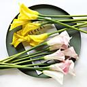 رخيصةأون زهور اصطناعية-زهور اصطناعية 5 فرع كلاسيكي أوروبي / أسلوب بسيط زبنق لالا