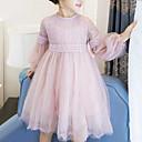 ieftine Seturi Îmbrăcăminte Fete-Copii Fete Dulce Zilnic / Ieșire Peteci Plasă Manșon Lung Celofibră / Poliester Rochie Alb 140