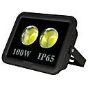 hesapli Projektör Lambalar-1pc 100 W LED Yer Işıkları Su Geçirmez / Dekorotif Sıcak Beyaz / Serin Beyaz 85-265 V Açık Hava Aydınlatma / Avlu / Bahçe 2 LED Boncuklar