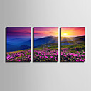 cheap Prints-Print Rolled Canvas Prints / Stretched Canvas Prints - Landscape / Natures & Outdoors Modern