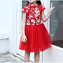 billige Pikekjoler-Barn Jente Vintage / Chinoiserie Blomstret / Lapper Netting / Broderi Kortermet Bomull / Polyester Kjole Rød