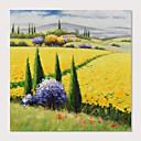 levne Krajiny-Hang-malované olejomalba Ručně malované - Krajina Moderní Obsahovat vnitřní rám / Reprodukce plátna