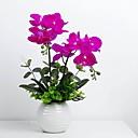preiswerte Künstliche Blumen-Künstliche Blumen 2 Ast Klassisch Moderne zeitgenössische Phalaenopsis