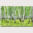 halpa Tulosteet-Painettu Pingoitetut kanvasprintit - Taiteet Moderni Perinteinen Moderni 3 paneeli Art Prints