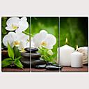 hesapli Tablolar-Boyama Gerdirilmiş Tuval Resimleri - Çiçek / Botanik Geleneksel Modern Üç Panelli Sanatsal Baskılar