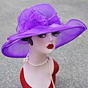levne Ozdoby do vlasů na večírek-Dámské Základní Sluneční klobouk-Jednobarevné Síťka Léto Rubínově červená Světlá růžová Fialová