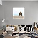 זול אומנות ממוסגרת-דפוס אומנות ממוסגרת סט ממוסגר - חיות אומנות פופ פוליסטירן תצלום וול ארט