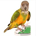 זול אביזרים לציפורים-ציפור מוטות וסולמות ידידותי לחיות מחמד פוקוס צעצוע הרגשתי / צעצועים בד ציפור בד אוקספורד 7.5 cm
