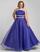 Χαμηλού Κόστους Βραδινά Φορέματα-Γραμμή Α Ένας Ώμος Μακρύ Οργάντζα Χοροεσπερίδα / Επίσημο Βραδινό Φόρεμα με Κρυστάλλινη λεπτομέρεια / Πιασίματα με TS Couture®