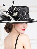 abordables Calcetines y Medias para Mujer-Celada Sombreros Boda/Ocasión especial/Al Aire Libre Organza Mujer Boda/Ocasión especial/Al Aire Libre 1 Pieza