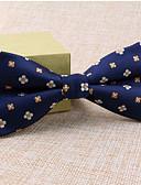 preiswerte Krawatten & Fliegen-Unisex Party / Büro / Grundlegend, Polyester Fliege - Druck Paisley-Muster / Blau