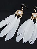 hesapli Gömlek-Kadın's Damla Küpeler Kuş tüyü Kişiselleştirilmiş Avrupa Moda Yerli Amerikan Tüy Küpeler Mücevher Uyumluluk Parti Günlük