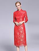 preiswerte Damen Kleider-Damen Chinoiserie Hülle Kleid - Spitze, Einfarbig Ständer