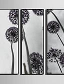 preiswerte Brautjungfernkleider-Blumenmuster/Botanisch Botanisch Darstellung Wandkunst, Plástico Stoff Mit Feld For Haus Dekoration Rand Kunst Wohnzimmer