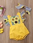 Χαμηλού Κόστους Βρεφικά σετ ρούχων-Μωρό Κοριτσίστικα Ενεργό Καθημερινά / Αργίες Φλοράλ / Συνδυασμός Χρωμάτων Με Βολάν / Σουρωτά / Λουλουδάτο Κοντομάνικο Πολυεστέρας Ένα Κομμάτι Κίτρινο / Χαριτωμένο / Στάμπα / Νήπιο