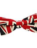 ieftine Cravate & Papioane de Bărbați-Unisex Bloc Culoare Funde Petrecere / De Bază Papion Cravată