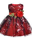 Χαμηλού Κόστους Φορέματα για κορίτσια-Παιδιά Κοριτσίστικα Κομψό στυλ street / Κινεζικό στυλ Πάρτι / Σαββατοκύριακο Ζακάρ Εξώπλατο Αμάνικο Μίντι / Ως το Γόνατο / Πάνω από το Γόνατο Βαμβάκι / Πολυεστέρας / Spandex Φόρεμα Κρασί