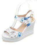 ieftine Tricou-Pentru femei Sandale Platformă PU Primăvară Sandale Toc Platformă Rosu / Verde / Albastru Deschis