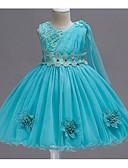 Χαμηλού Κόστους Φορέματα για κορίτσια-Παιδιά Κοριτσίστικα Ενεργό Καθημερινά Μονόχρωμο Φιόγκος Αμάνικο Ως το Γόνατο Πολυεστέρας Φόρεμα Φούξια