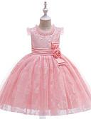 Недорогие Платья-Дети Девочки Активный / Милая Однотонный Вышивка Без рукавов До колена Платье Розовый