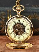 povoljno Smokinzi-Muškarci Džepni sat Mehanički na navijanje Zlatna New Design Casual sat Analog Novi Dolazak Steampunk Skeleton - Zlatna