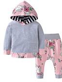 povoljno Kompletići za bebe-Dijete Djevojčice Ulični šik Color block Dugih rukava Regularna Komplet odjeće Sive boje