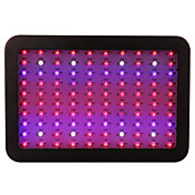 10000 LEDグローライト ナチュラルホワイト レッド ブルー UV(ブラックライト) 1個