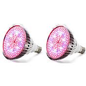 E27 Luces LED para Crecimiento Vegetal 120 SMD 5730 4000-5000 lm Blanco Cálido Rojo Azul UV (Luz Negra) K V