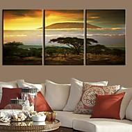 billiga Tryck-Stretchad Kanvastryck Kanvas set Landskap Resor Tre paneler Vertikal Tryck väggdekor Hem-dekoration