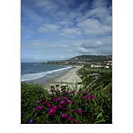 billige Rullegardiner-sketchy solfylte kysten landskap roller skygge