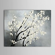 IARTS®Hand Painted Oil Painting Floral White Blooming Flower Canvas Painting with Stretched Frame