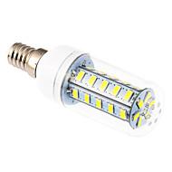 YWXLIGHT® 6W 500-600 lm E14 LEDコーン型電球 T 36 LEDの SMD 5730 クールホワイト AC 220-240V