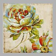 El-Boyalı Çiçek/Botanik Kare,Pastoral Tek Panelli Kanvas Hang-Boyalı Yağlıboya Resim For Ev dekorasyonu