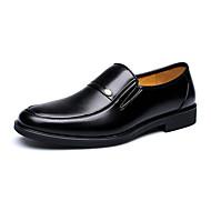 Bărbați Mocasini & Balerini Primăvară Vară Toamnă Iarnă Confortabili Pantofi formale Imitație de Piele Birou & Carieră Casual Toc Plat